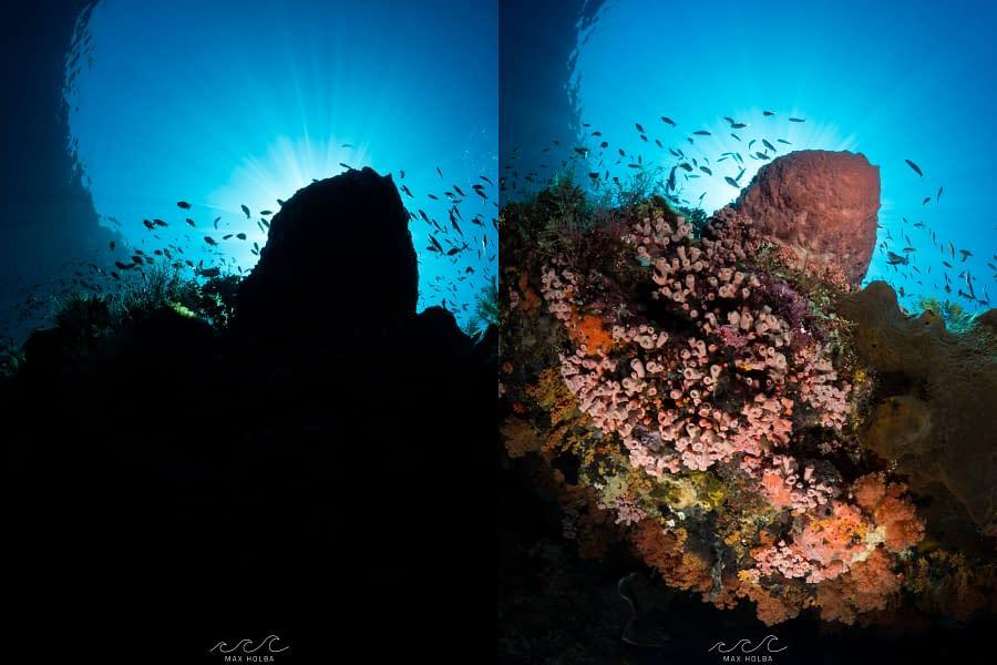 Understanding Light - Alor Photo Academy - Max Holba